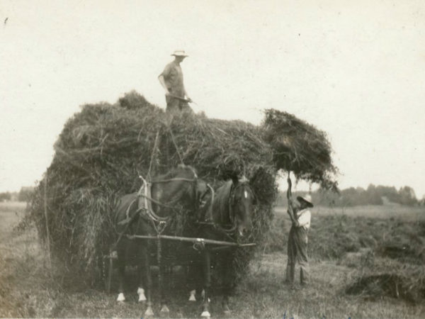 Baxter and Crowe loading hay in Heuvelton