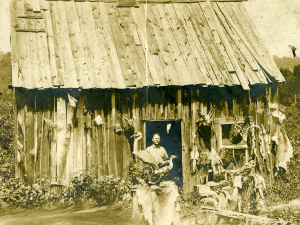 Taxidermy cabin in the Adirondacks