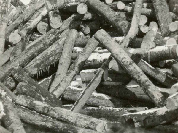 Pile of logs at the Emporium Lumber Company Mill in Cranberry Lake