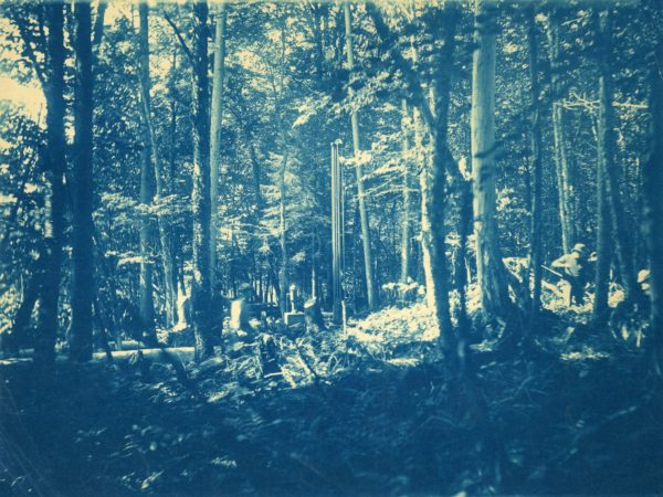 Men working in the woods in Beaver River