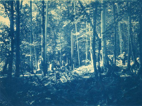Men working in the woods in Beaver River
