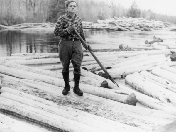 Logger with peavey in the Town of Webb