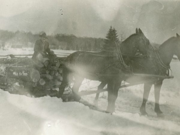 Bobsled load of logs in the Town of Webb