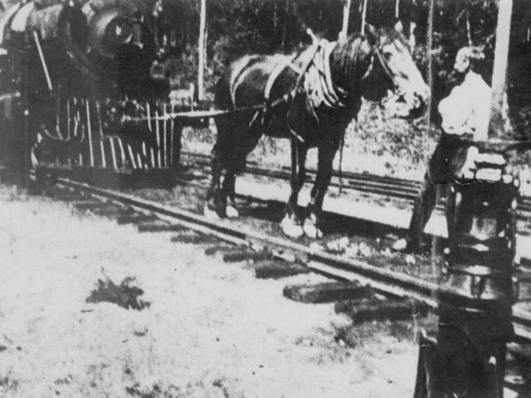 Horses towing railroad engine on the Raquette Lake Railroad in the Town of Long Lake