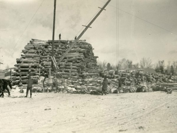 Log piles in Brandreth in the Town of Webb