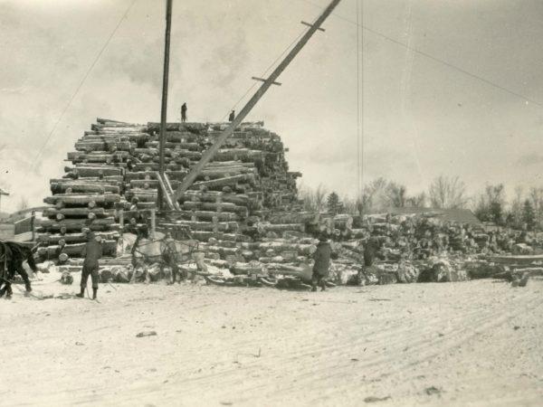 Log piles in Brandreth in the Town of Webb