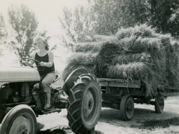 The last load of hay in the Town of De Kalb