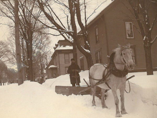Horse pulls the village plow in Canton
