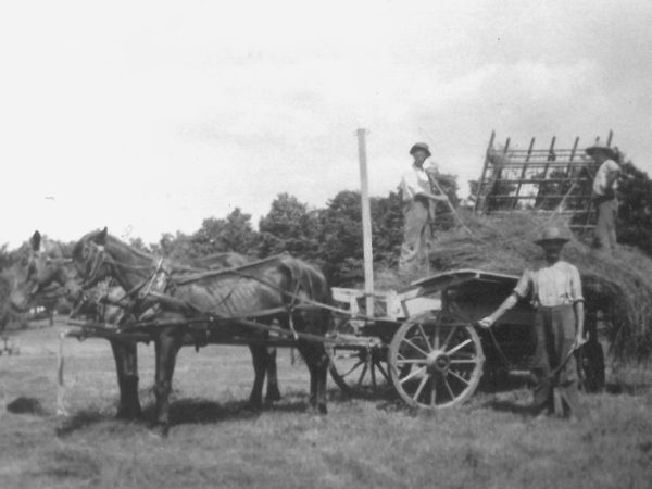 Judd family loading hay on the Wallace Farm in Canton