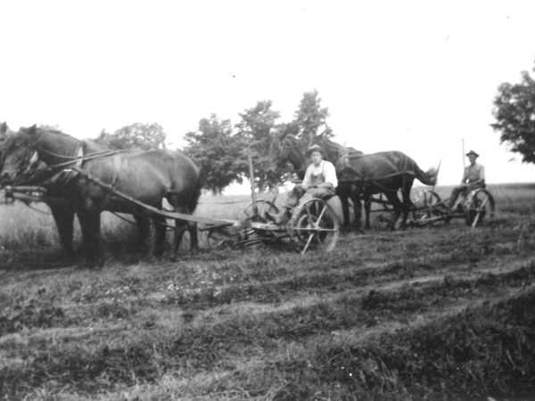 Judd brothers mowing hay in the fields of the Wallace Farm in Canton