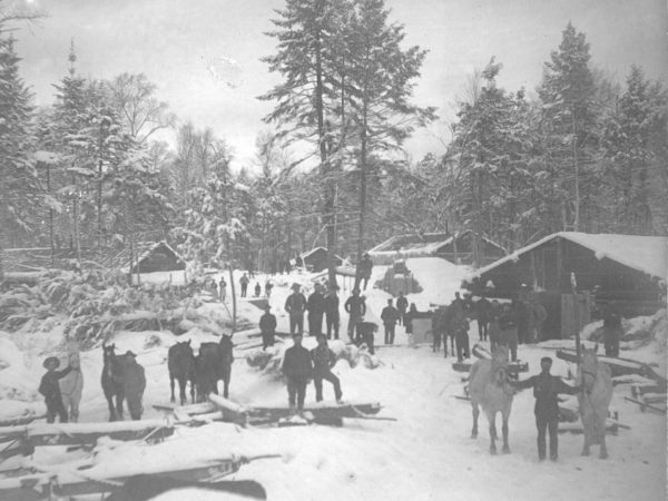 Lumber camp under snow in Clare Township