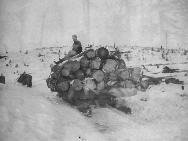 Logger seated on log pile below a cleared hillside in Canton