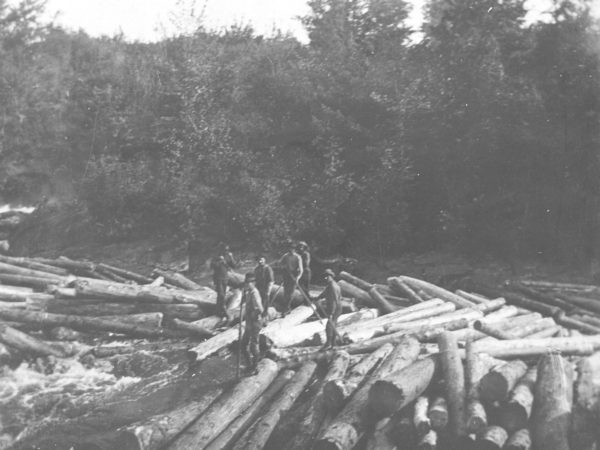 Loggers standing on log pile in the middle of the Racquette River in Colton