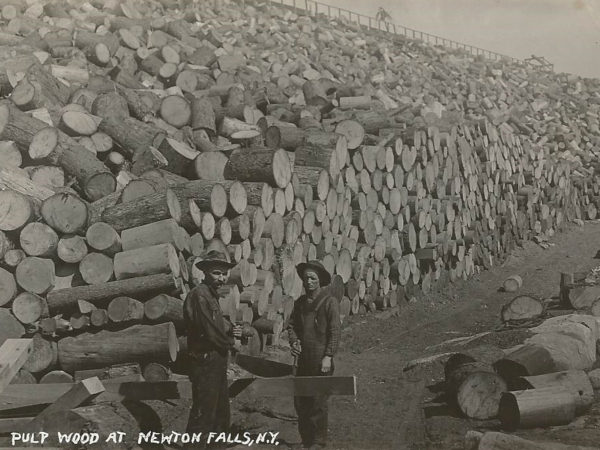 Pulp wood pile and loggers in Newton Falls