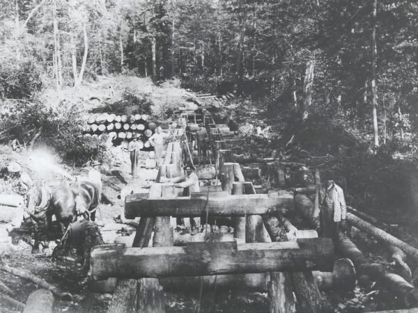 Building a trestle bridge for logging railroad in Cranberry Lake