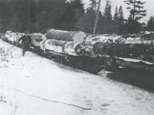 Moving logs out of the woods by train in Cranberry Lake