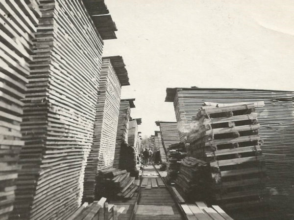 Stacks in the Emporium Forestry Company lumber yard in Cranberry Lake