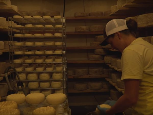 Margot Brooks washing cheeses inside the Sugar House Creamery cheese cave in Upper Jay