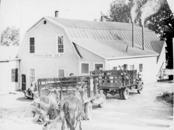 Farmers drop milk at the Hermon Dairy Company in Hermon