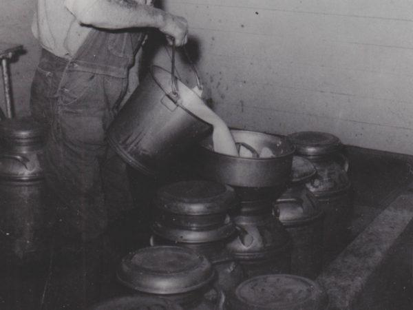 Herbert Thompson filtering milk in De Kalb