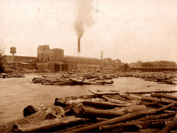 Timber yard at the Racquette River Paper Company in Potsdam