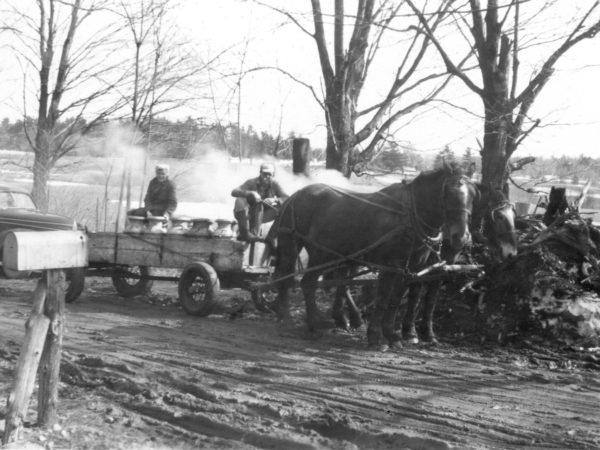 Making maple syrup on the McGregor Farm in Hammond