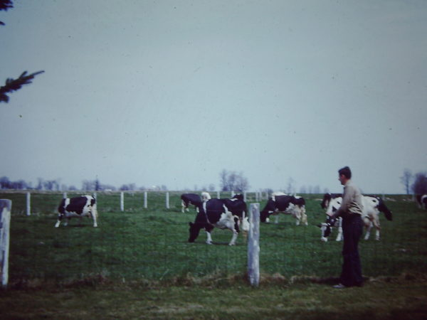 Man next to a cow pasture on the Thompson farm in Lisbon