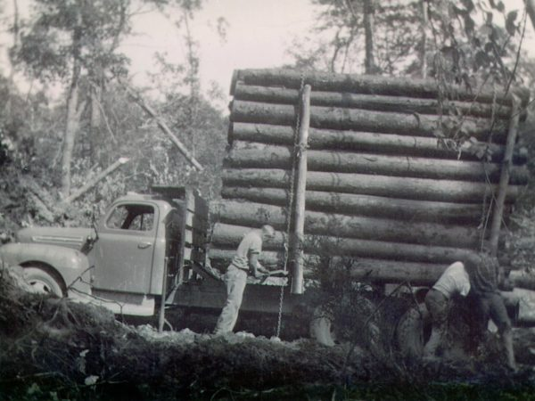 Crew secure a stack of logs in North Hudson