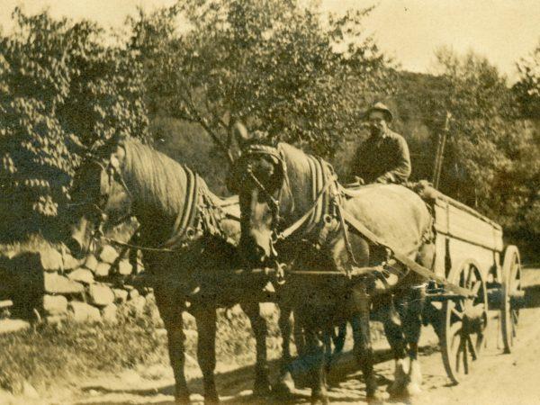Farmer drives a horse drawn wagon in Long Lake
