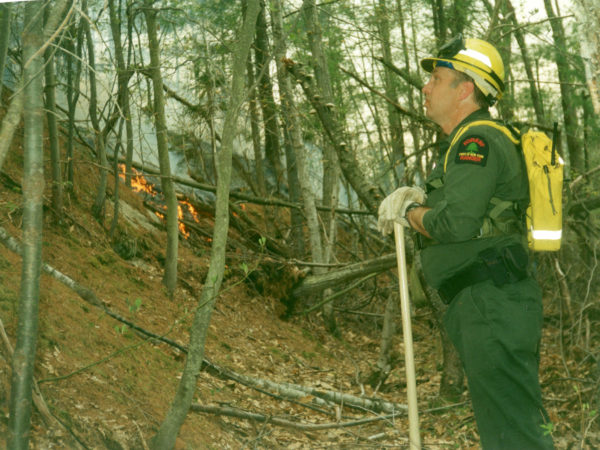 Forest ranger at the site of a wildfire