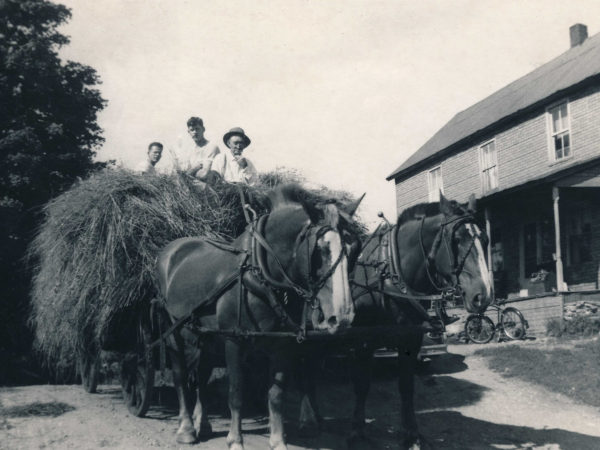Bringing in a wagon load of hay in Wells