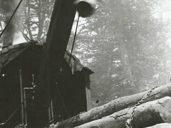 Using a steam loader to hoist logs in Newbridge
