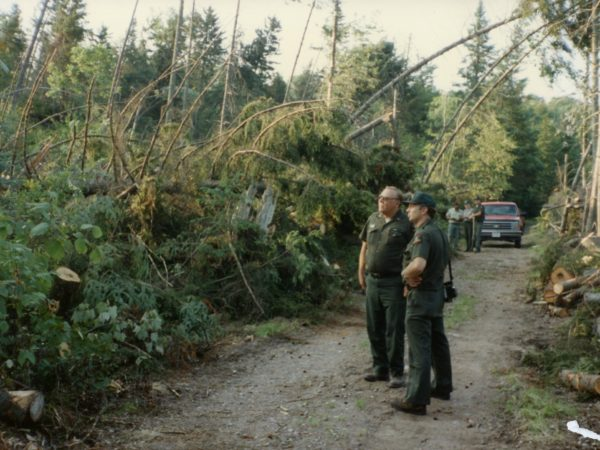 Forest rangers assess damage after a microburst in Wanakena C