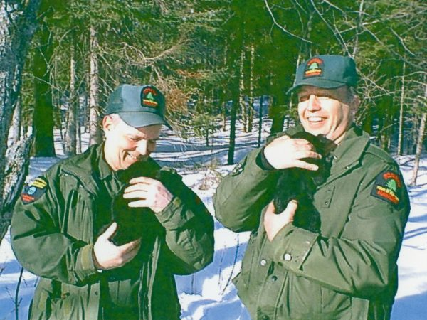 Forest rangers hold black bear cubs in Colton