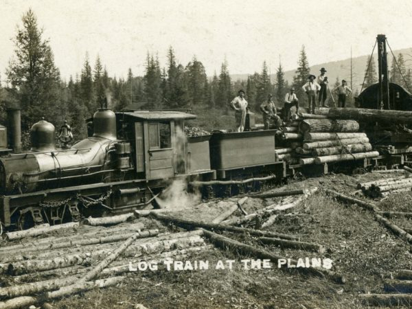 Men on top of a log train at the Plains in Wanakena