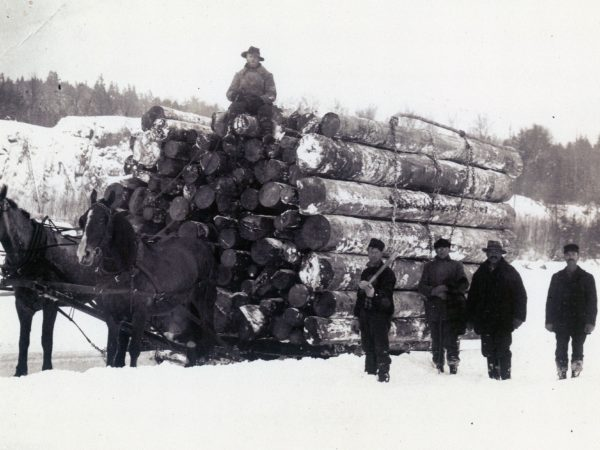 A big load of logs near Harrisville.
