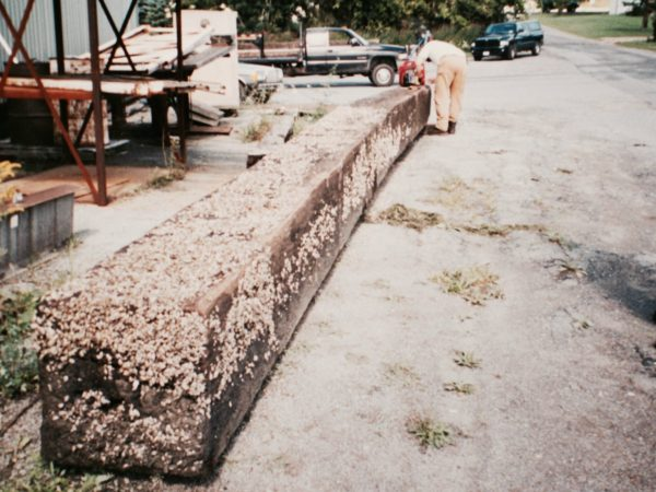 Oak beam found by scuba divers in the St. Lawrence River in Clayton