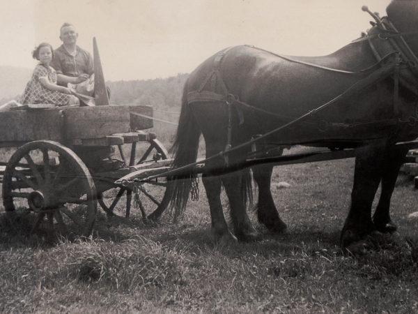 Farmer Burr Mason in Benson