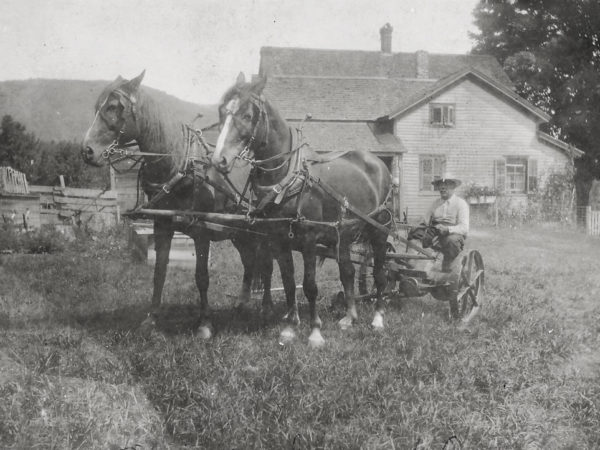 56. Man with horses at Politsch Place in Benson
