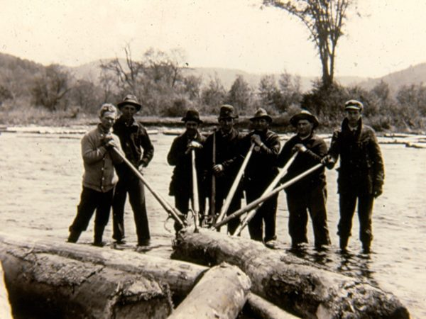 Group of loggers driving logs on the river in Hope