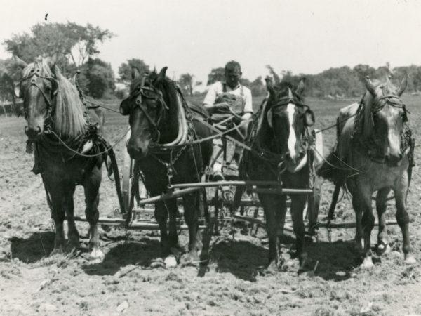 Preston Brenon harrows a field in Carthage area