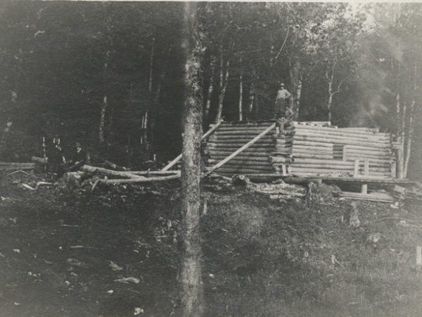 Building a log cabin in the woods in Wilmurt