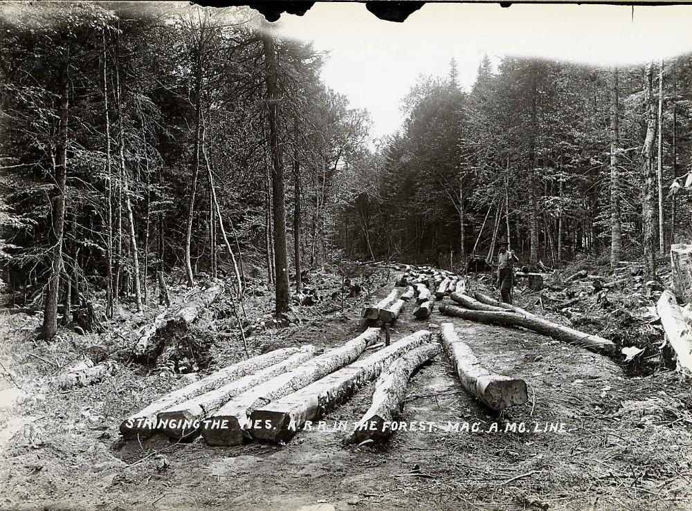 Stringing railroad ties in Brandreth Park  
