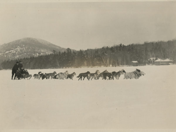 Dogsled team pulls people in Lake Placid