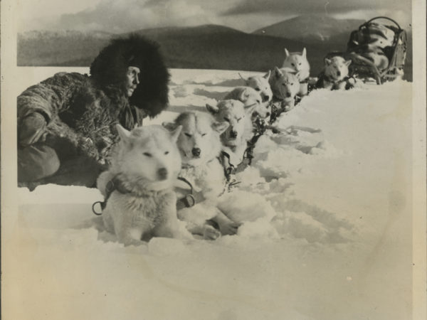 Jacques Suzanne with his team of dogs in Lake Placid