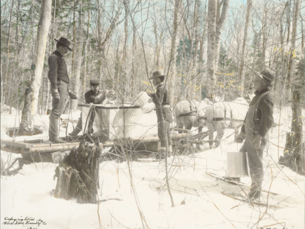 Horseshoe Forestry Company workers pour sap into gathering tank in the woods of Piercefield