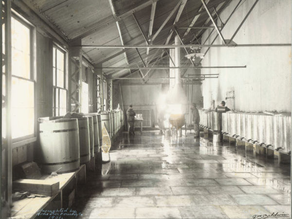 Men process maple sap in the canning room at the Horseshoe Forestry Company in Tupper Lake