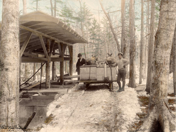 : Men empty sap from a gathering tank into storage vats at the Horseshoe Forestry Company in Piercefield
