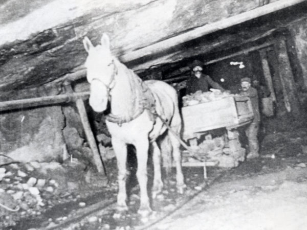 Horse pulls ore car loaded with graphite in mine in Hague