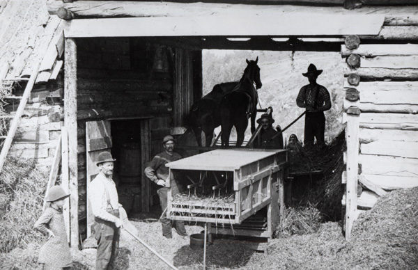 Men with a horse-powered threshing machine in Johnsburg